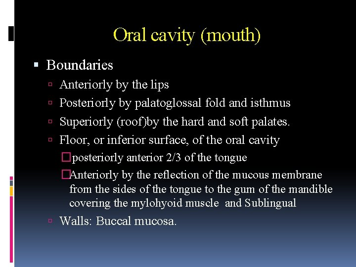 Oral cavity (mouth) Boundaries Anteriorly by the lips Posteriorly by palatoglossal fold and isthmus