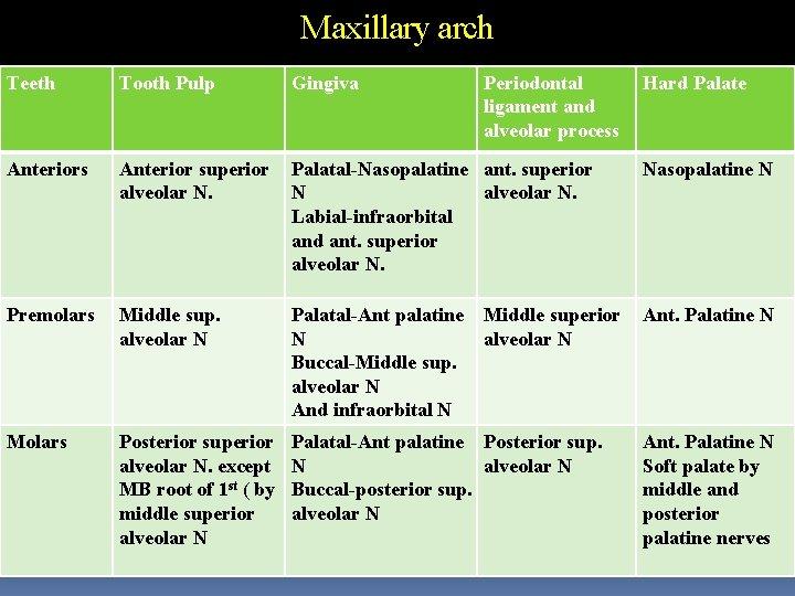Maxillary arch Teeth Tooth Pulp Gingiva Periodontal ligament and alveolar process Anterior superior alveolar