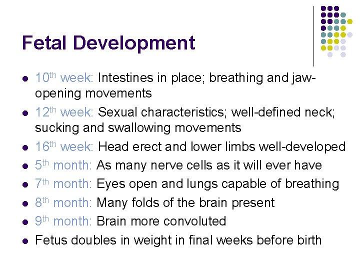 Fetal Development l l l l 10 th week: Intestines in place; breathing and