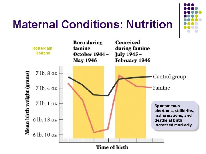 Maternal Conditions: Nutrition Rotterdam, Holland Spontaneous abortions, stillbirths, malformations, and deaths at birth increased