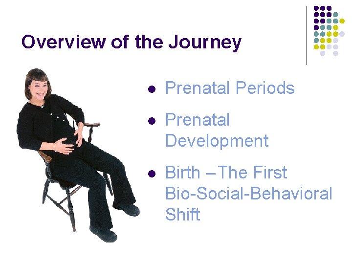 Overview of the Journey l Prenatal Periods l Prenatal Development l Birth – The