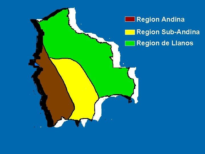 Region Andina Region Sub-Andina Region de Llanos