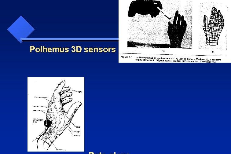 Polhemus 3 D sensors