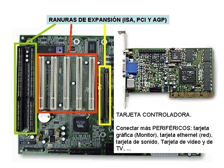 RANURAS DE EXPANSIÓN (ISA, PCI Y AGP) TARJETA CONTROLADORA. Conectar más PERIFÉRICOS: tarjeta gráfica