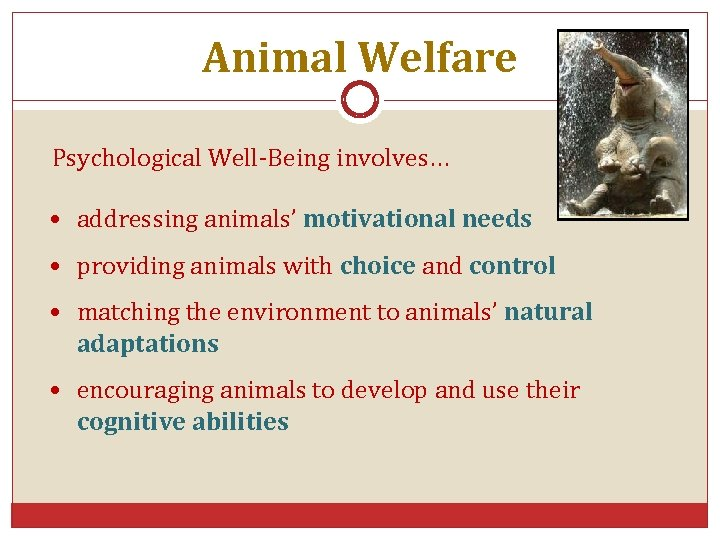 Animal Welfare Psychological Well-Being involves… • addressing animals' motivational needs • providing animals with
