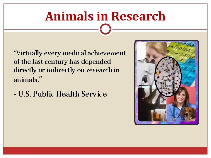 """Animals in Research """"Virtually every medical achievement of the last century has depended directly"""