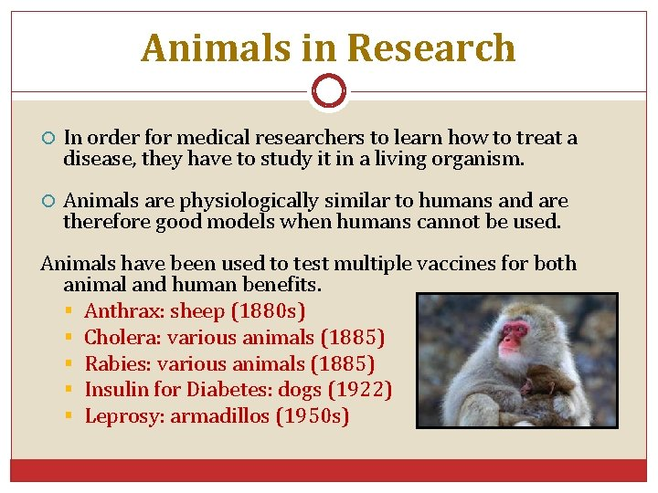 Animals in Research In order for medical researchers to learn how to treat a