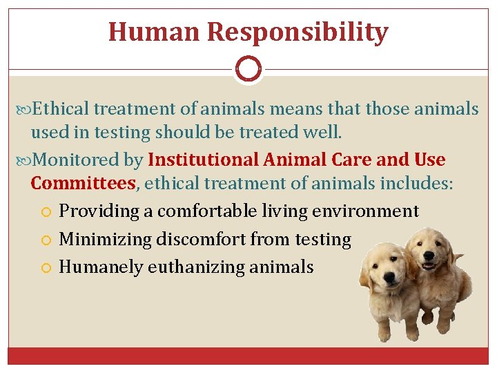 Human Responsibility Ethical treatment of animals means that those animals used in testing should