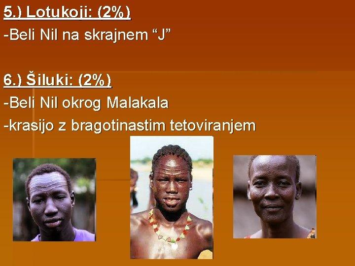 """5. ) Lotukoji: (2%) -Beli Nil na skrajnem """"J"""" 6. ) Šiluki: (2%) -Beli"""