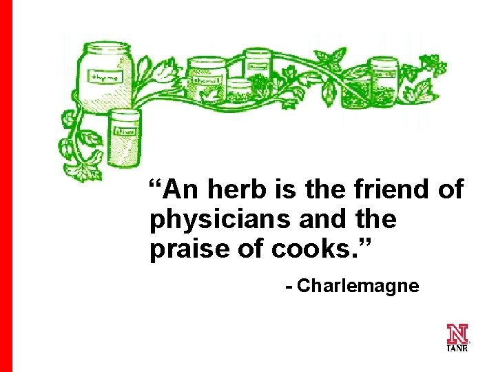 """""""An herb is the friend of physicians and the praise of cooks. """" -"""