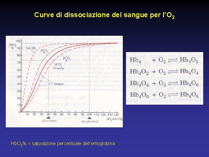 Curve di dissociazione del sangue per l'O 2 Pg 558 casella Hb. O 2%