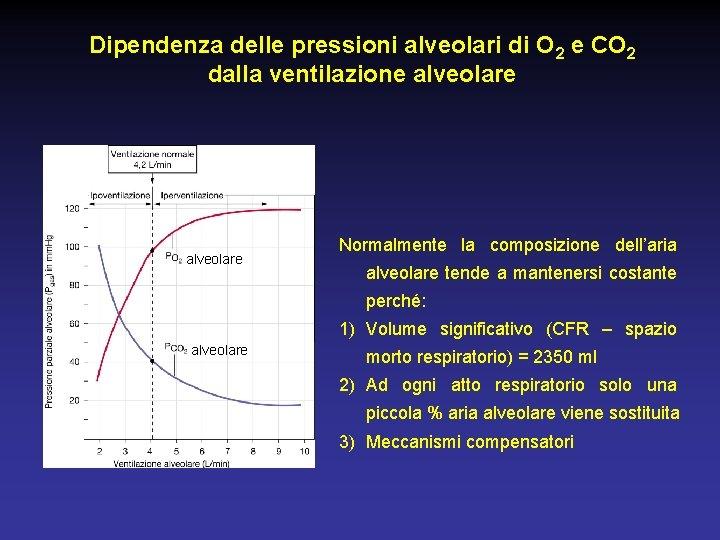 Dipendenza delle pressioni alveolari di O 2 e CO 2 dalla ventilazione alveolare Normalmente