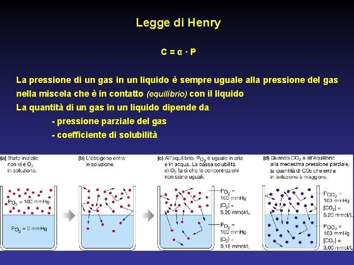 Legge di Henry C=α·P La pressione di un gas in un liquido è sempre