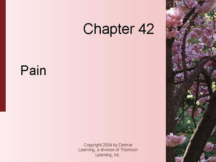 Chapter 42 Pain Copyright 2004 by Delmar Learning, a division of Thomson Learning, Inc.