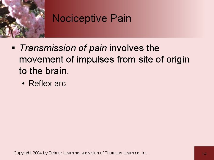 Nociceptive Pain § Transmission of pain involves the movement of impulses from site of