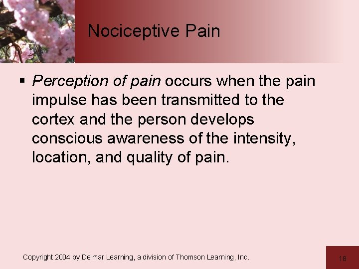 Nociceptive Pain § Perception of pain occurs when the pain impulse has been transmitted