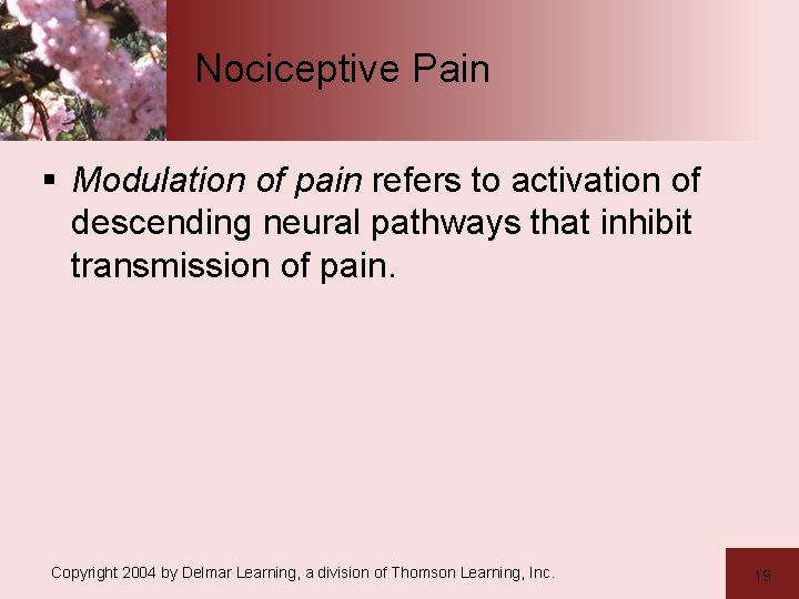 Nociceptive Pain § Modulation of pain refers to activation of descending neural pathways that