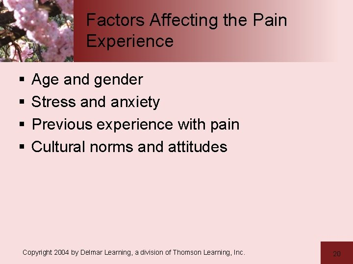 Factors Affecting the Pain Experience § § Age and gender Stress and anxiety Previous
