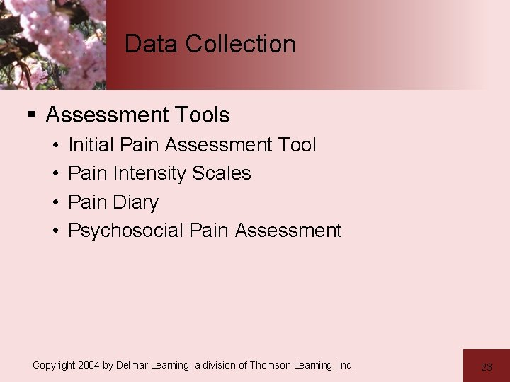 Data Collection § Assessment Tools • • Initial Pain Assessment Tool Pain Intensity Scales