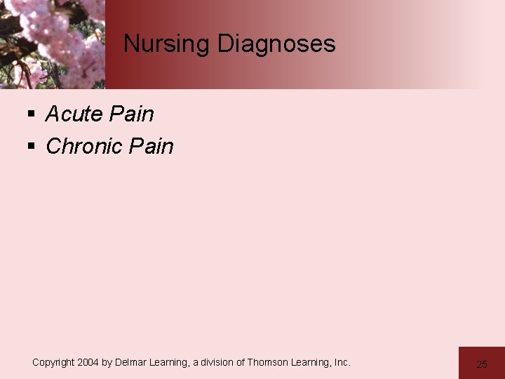 Nursing Diagnoses § Acute Pain § Chronic Pain Copyright 2004 by Delmar Learning, a