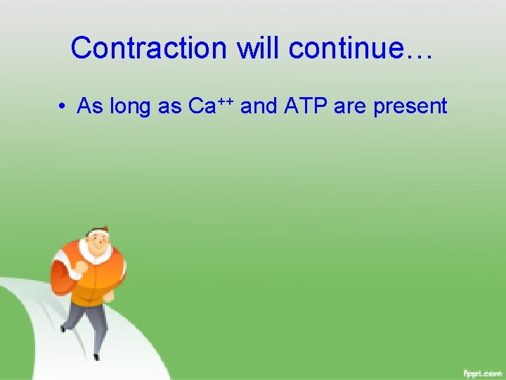 Contraction will continue… • As long as Ca++ and ATP are present