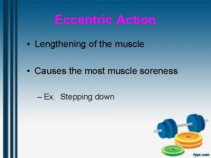 Eccentric Action • Lengthening of the muscle • Causes the most muscle soreness –