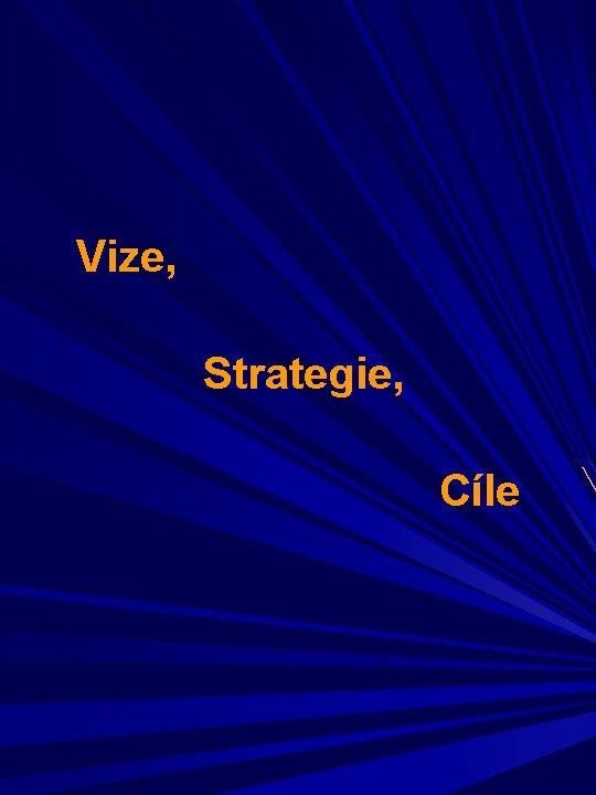 Vize, Strategie, Cíle