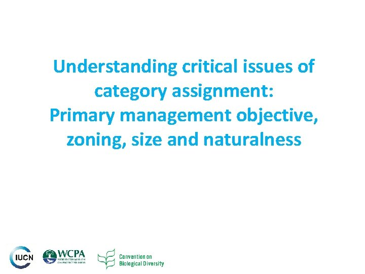 Understanding critical issues of category assignment: Primary management objective, zoning, size and naturalness INTERNATIONAL