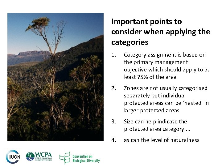 Important points to consider when applying the categories 5 1. Category assignment is based