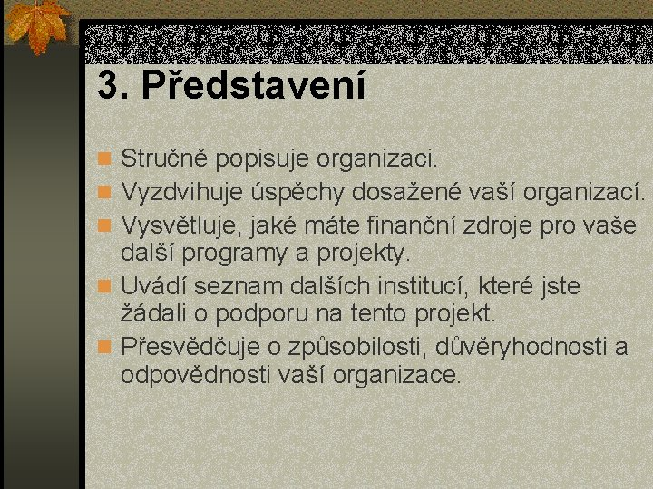 3. Představení n Stručně popisuje organizaci. n Vyzdvihuje úspěchy dosažené vaší organizací. n Vysvětluje,