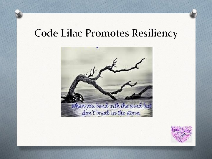 Code Lilac Promotes Resiliency