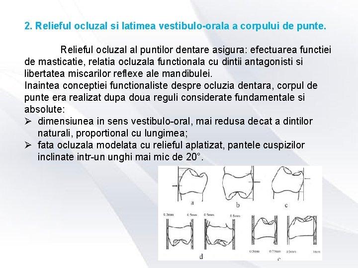 2. Relieful ocluzal si latimea vestibulo-orala a corpului de punte. Relieful ocluzal al puntilor