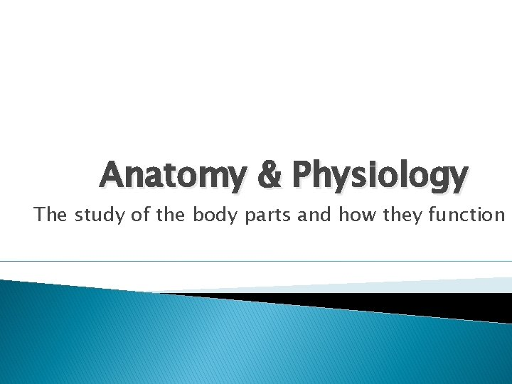 Anatomy & Physiology The study of the body parts and how they function