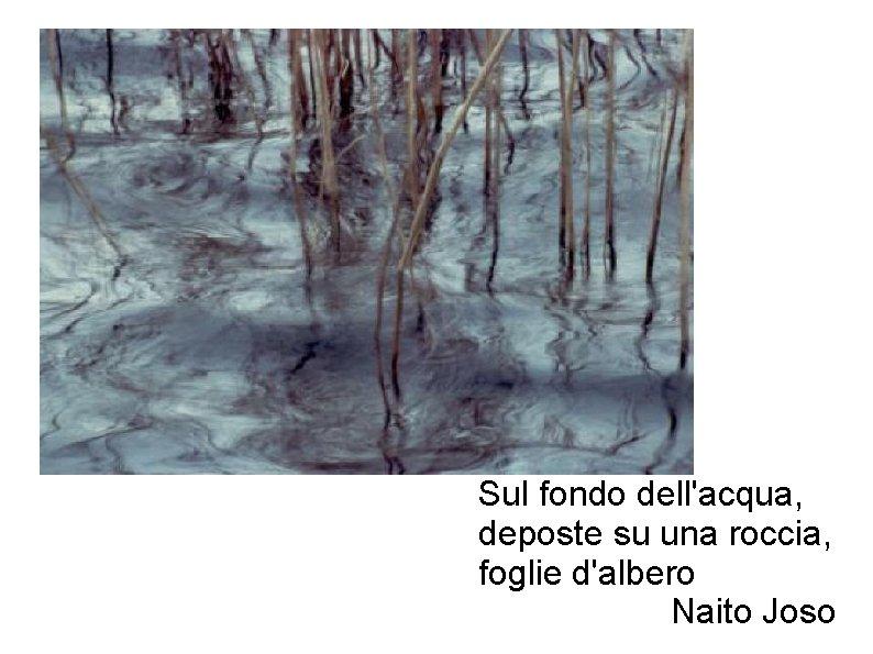 Sul fondo dell'acqua, deposte su una roccia, foglie d'albero Naito Joso