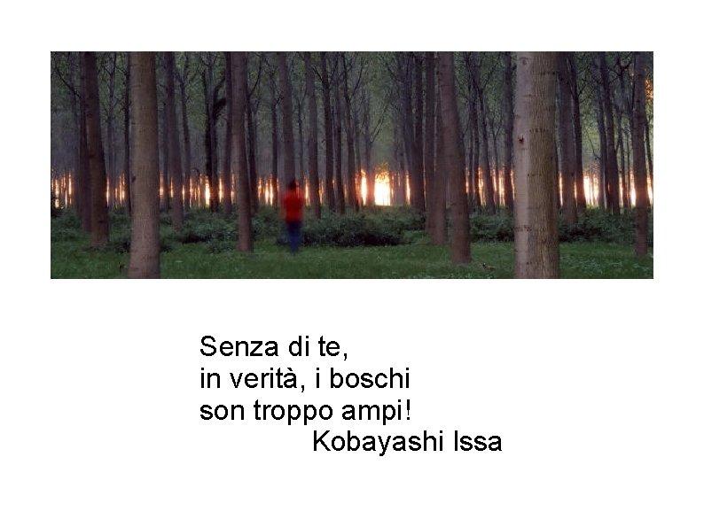Senza di te, in verità, i boschi son troppo ampi! Kobayashi Issa