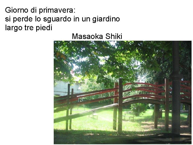 Giorno di primavera: si perde lo sguardo in un giardino largo tre piedi Masaoka