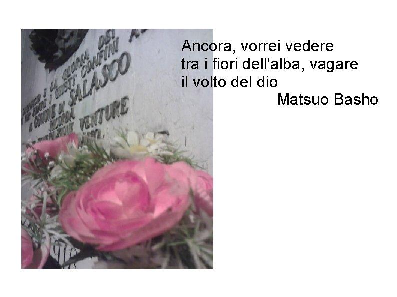 Ancora, vorrei vedere tra i fiori dell'alba, vagare il volto del dio Matsuo Basho