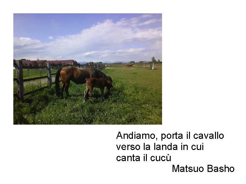 Andiamo, porta il cavallo verso la landa in cui canta il cucù Matsuo Basho