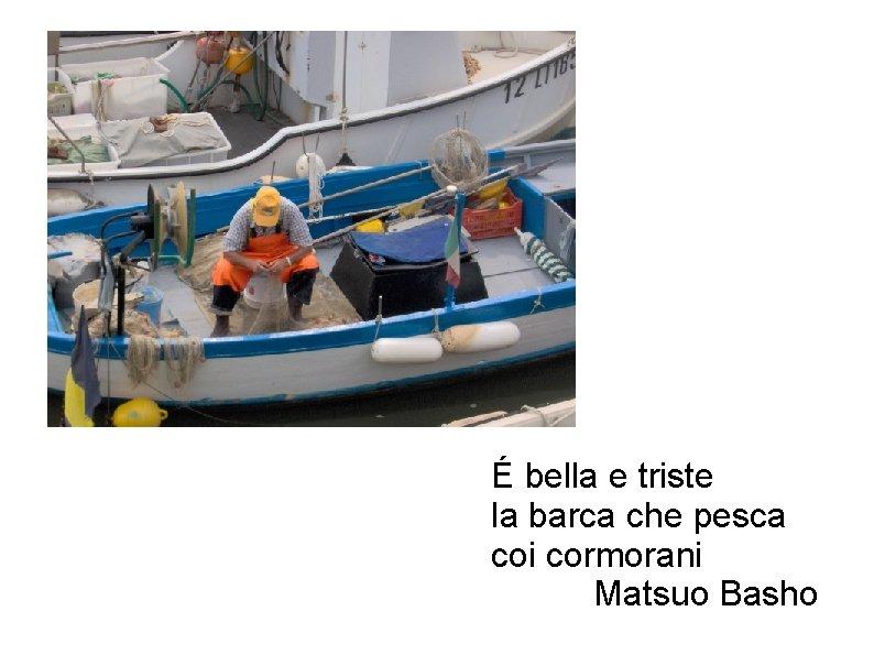 É bella e triste la barca che pesca coi cormorani Matsuo Basho
