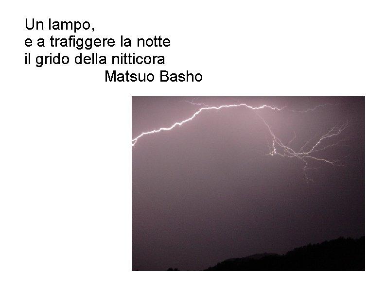 Un lampo, e a trafiggere la notte il grido della nitticora Matsuo Basho