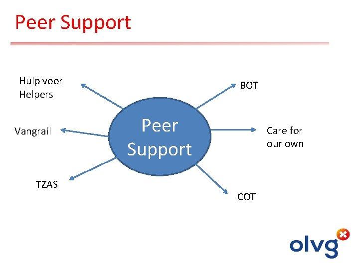 Peer Support Hulp voor Helpers Vangrail TZAS BOT Peer Support Care for our own