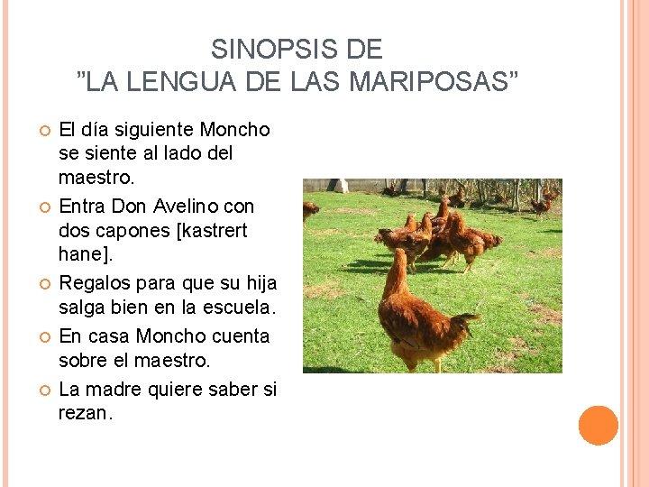 """SINOPSIS DE """"LA LENGUA DE LAS MARIPOSAS"""" El día siguiente Moncho se siente al"""