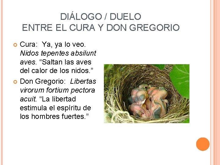 DIÁLOGO / DUELO ENTRE EL CURA Y DON GREGORIO Cura: Ya, ya lo veo.