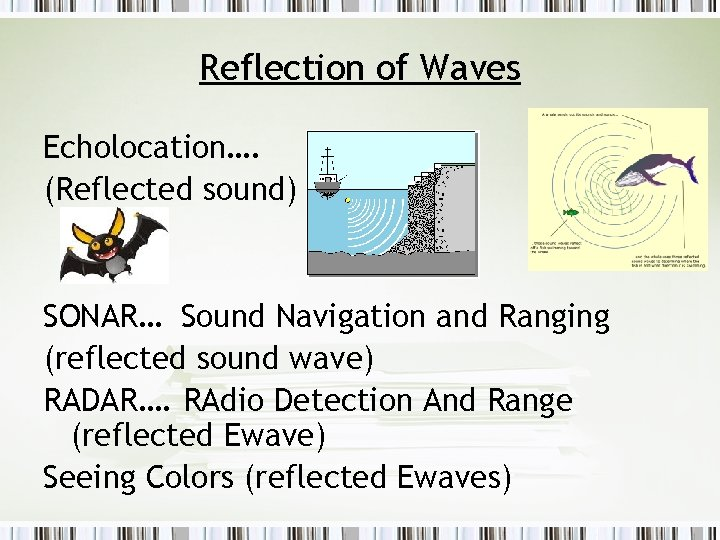 Reflection of Waves Echolocation…. (Reflected sound) SONAR… Sound Navigation and Ranging (reflected sound wave)