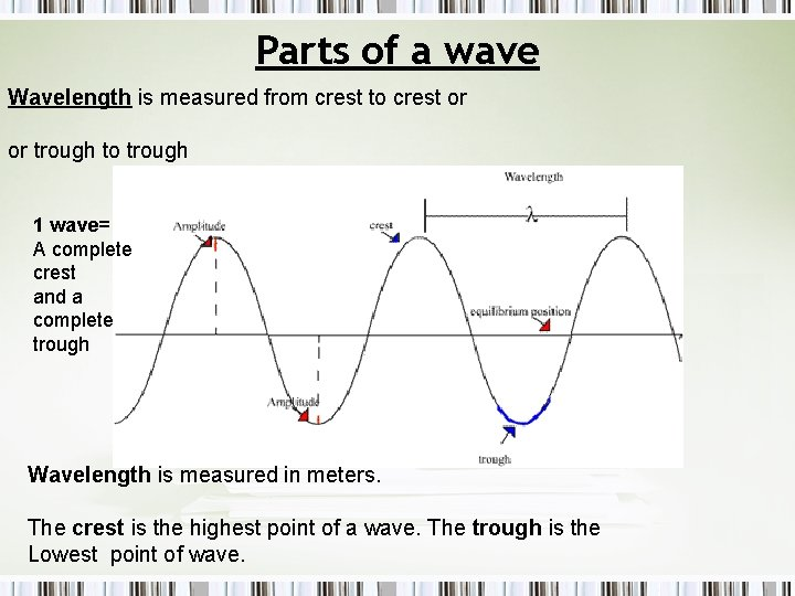 Parts of a wave Wavelength is measured from crest to crest or or trough