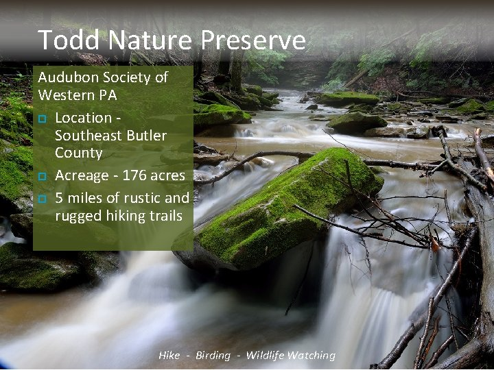 Todd Nature Preserve Audubon Society of Western PA Location - Southeast Butler County Acreage