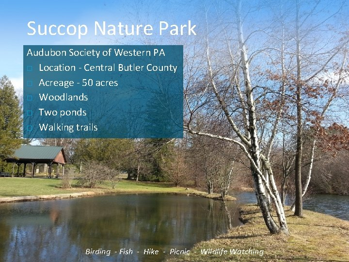 Succop Nature Park Audubon Society of Western PA Location - Central Butler County Acreage