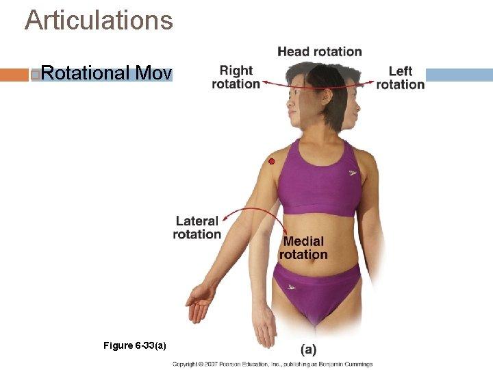 Articulations Rotational Movements Figure 6 -33(a)