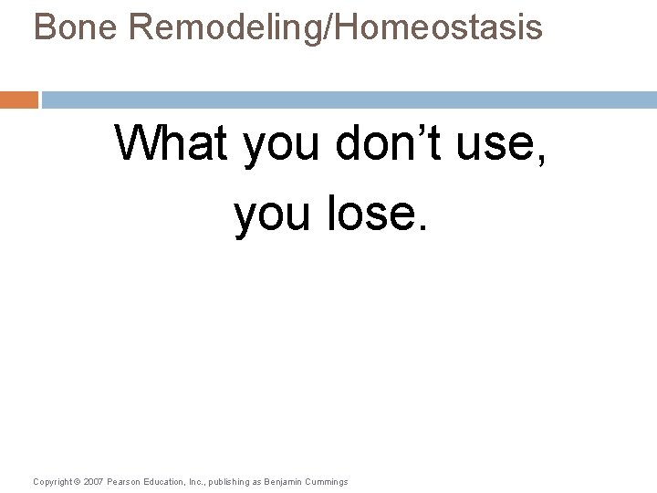 Bone Remodeling/Homeostasis What you don't use, you lose. Copyright © 2007 Pearson Education, Inc.