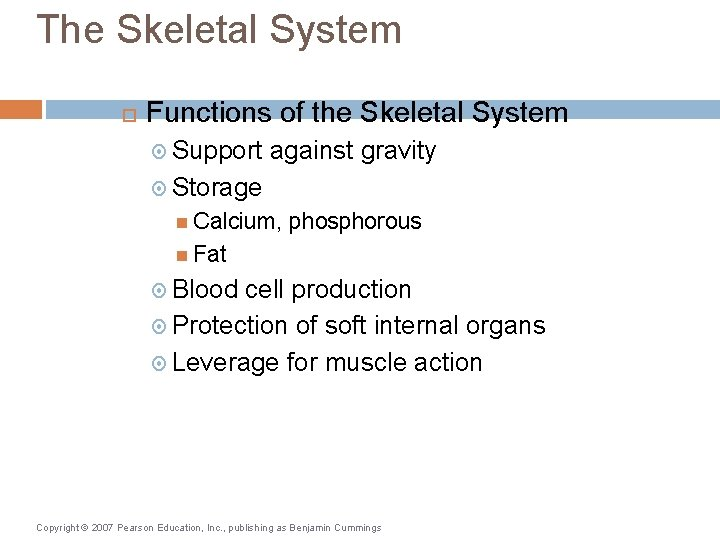 The Skeletal System Functions of the Skeletal System Support against gravity Storage Calcium, phosphorous